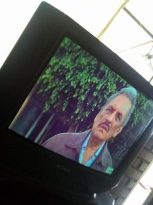Tv Sony 21 Pulgadas con Pequeña Falla