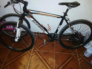 Bicicleta Ecobike
