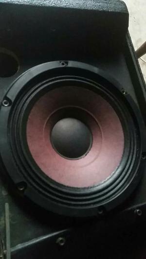 Parlante 8 Pulgadas Eighteen Sound