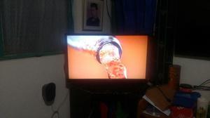 Vendo O Cambio Tv Challenger de 32 Led