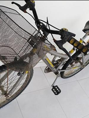 Permuto O Vendo Bicicleta Rin 24