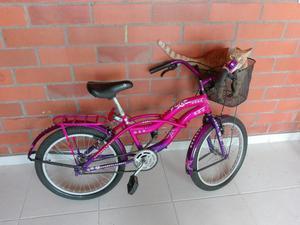 2 Bicicletas Playeras Marco 20 Y 24 Poco