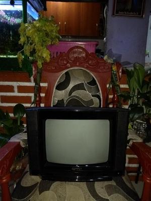 Televisor en Excelente Estado de 14 Pulg