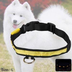 Collar Para Perro Led Amarillo Talla S M L Xl