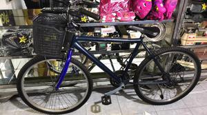 Bicicleta con Canasta Usada