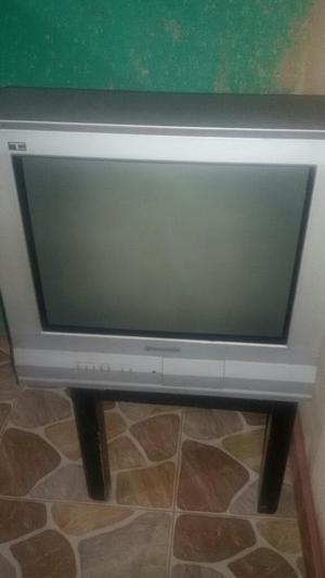 Tv Televisor Panasonic 21 Pulgadas