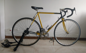 se vende bicileta de ruta
