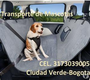 Transporte de mascotas puerta a puerta Bogota