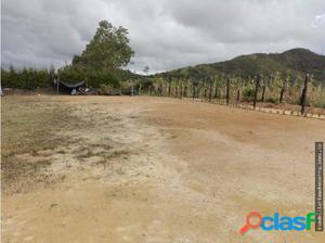 LOTE EN SAN VICENTE CERCA DEL PUEBLO