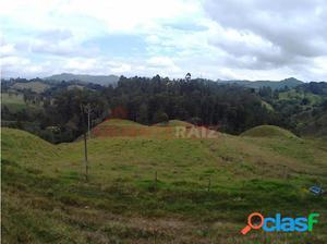 lote en venta el Retiro Antioquia parcelar or2808