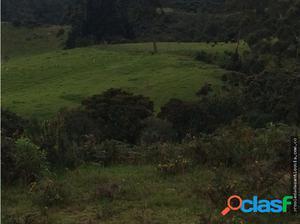 Lotes en Venta sector Loma Del Escobero