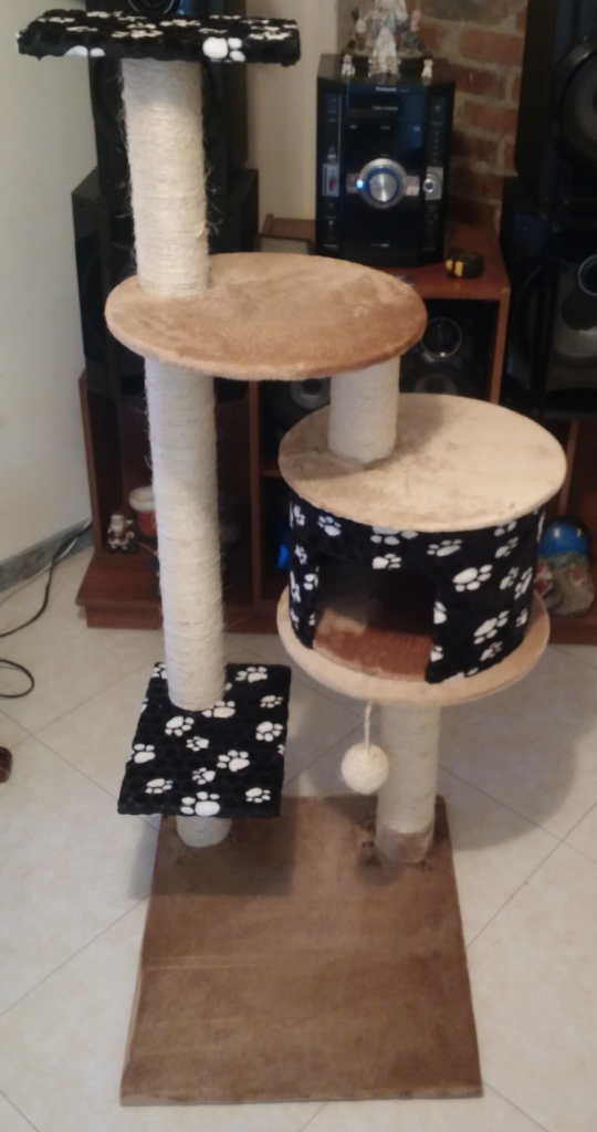 casa gimnasio para gato