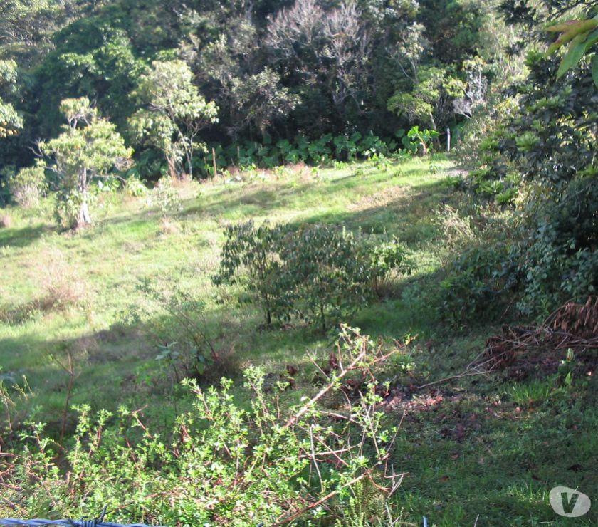 finca de  hectareas en San Vicente del Caguan