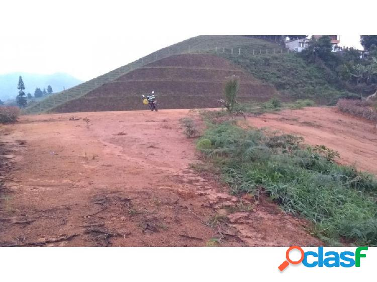 LOTE GUARNE 5 MIL MTS 300 MILLONES