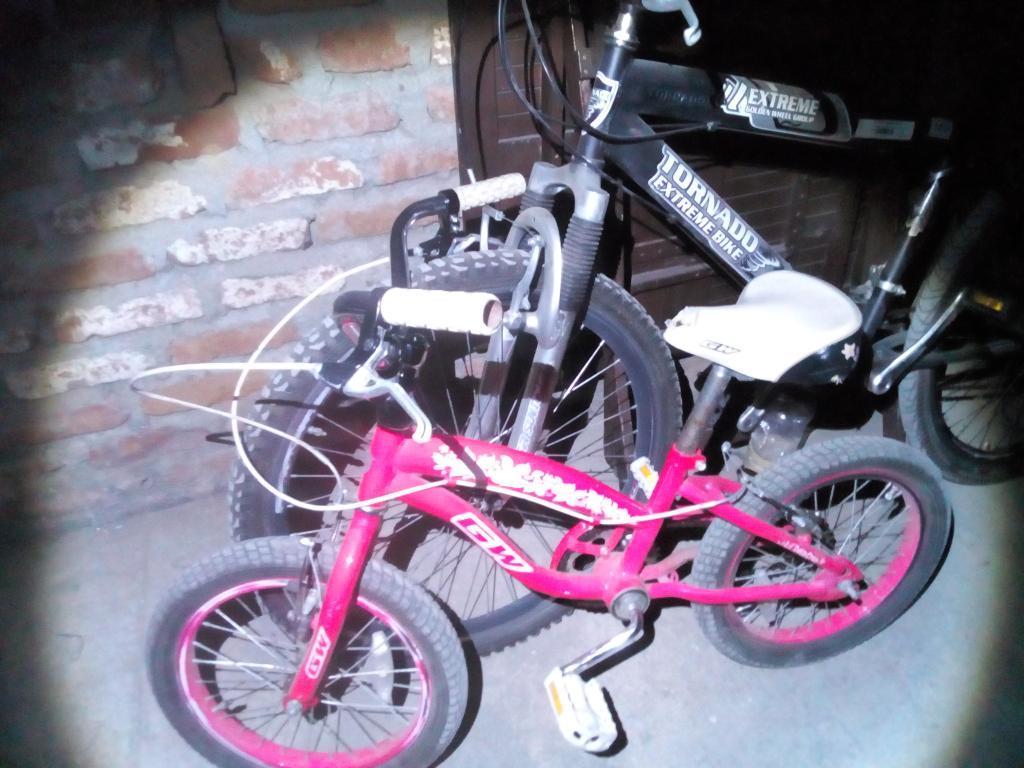 Bicicleta Princesa Y Todo Terreno