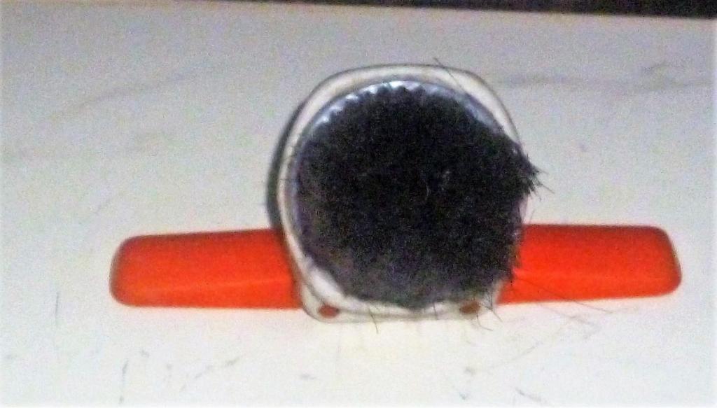 cepillo aspiradora industrial electrolux