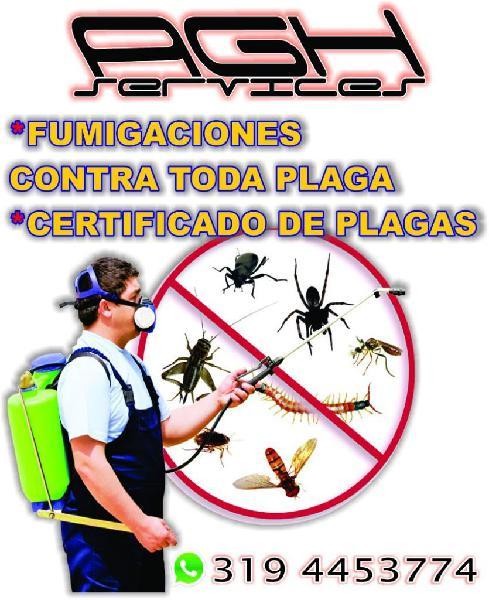 Agh Services Todo en Control de Plagas