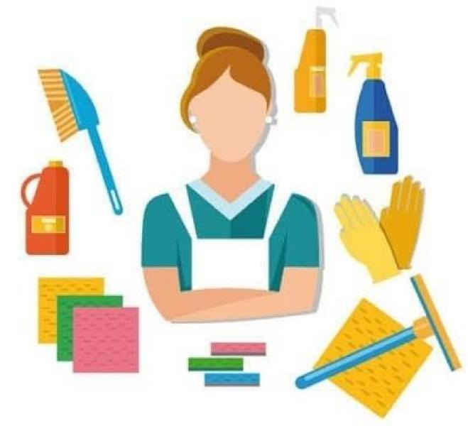 Servicio de Domestica por Días