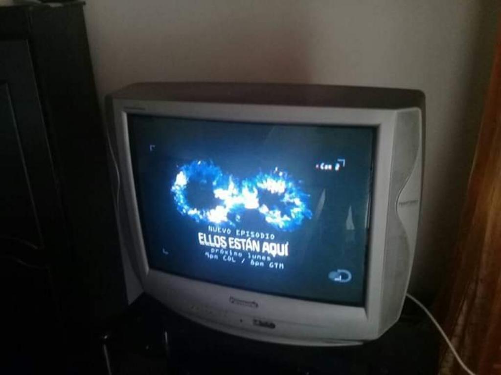 Vendo Televisión Marca Panasonic 29