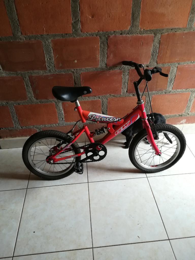 Bicicleta para Niña, en Buen Estado