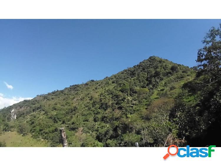 LOTE EN TARSO EN LA ARBOLEDA A 4 KM DEL PARQUE