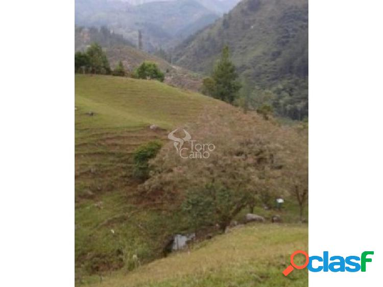 Se vende Lote en Barbosa Antioquia