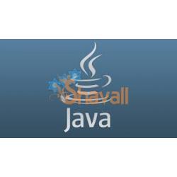 Video Curso capacitacion virtual en Programación y