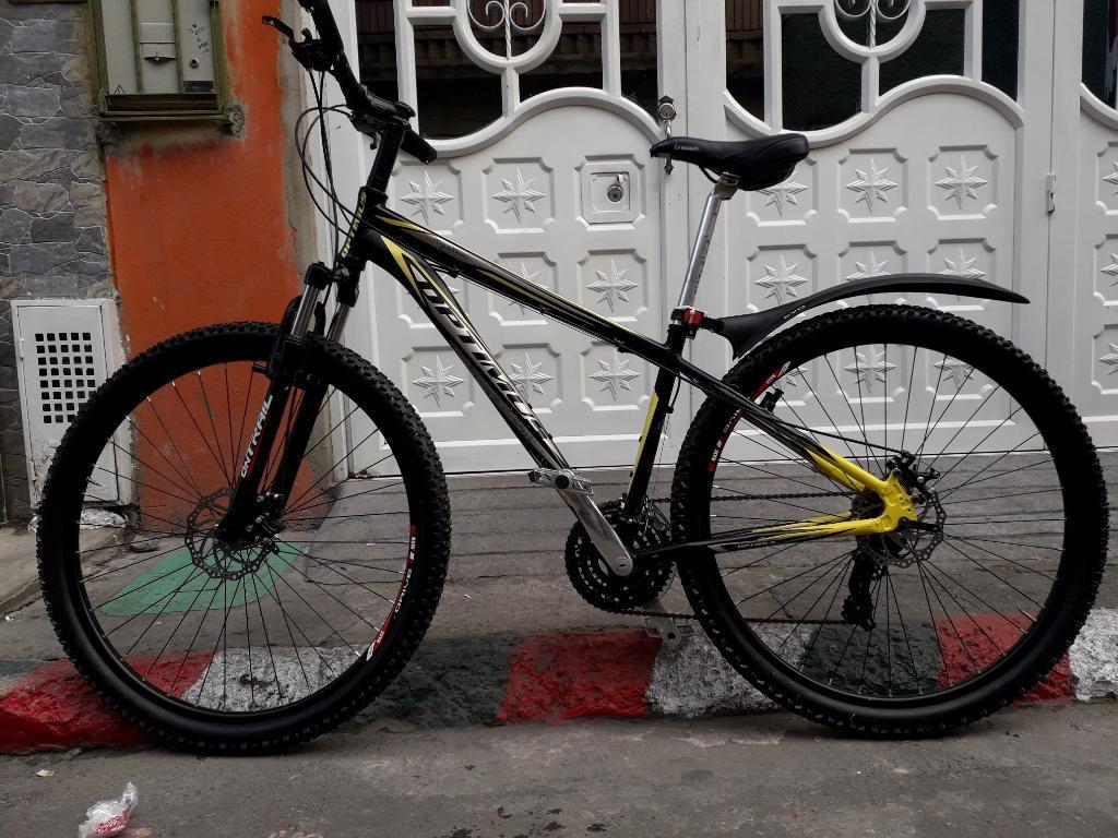 Bicileta en Aluminio Rin 29.