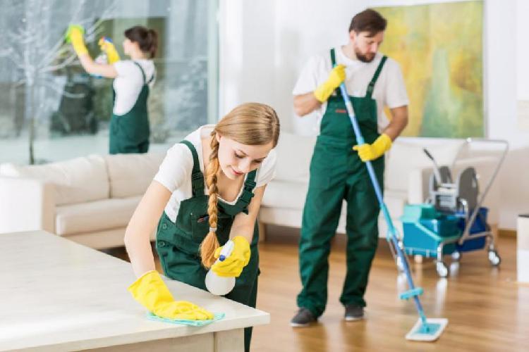 Limpieza Domestica Y Oficios Varios 24 H
