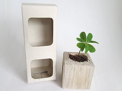 Trébol de 4 hojas en matera de madera