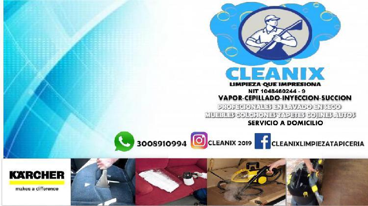 limpieza colchones muebles autos en general