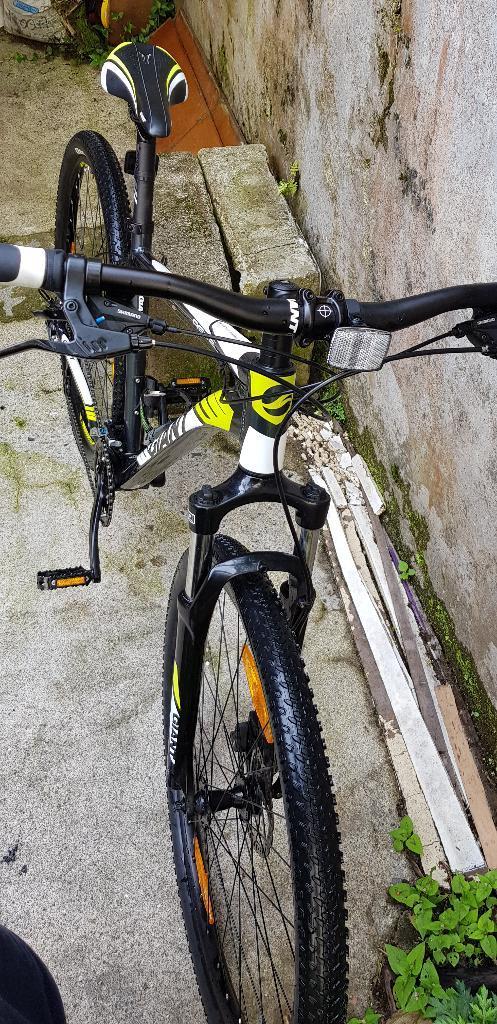 Bicicleta Giant Talla L Rin 29