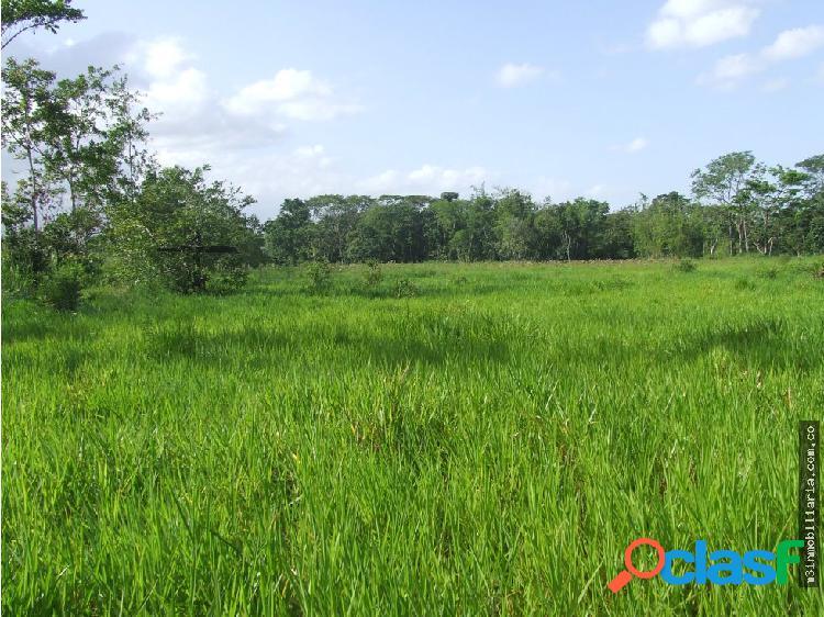17 hectareas en venta en Villavicencio