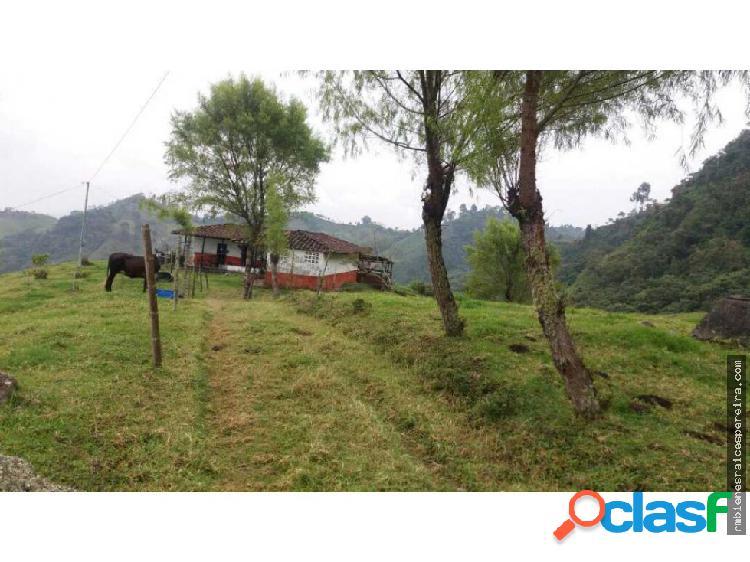 VENTA O PERMUTA FINCA EN GUATICA RISARALDA