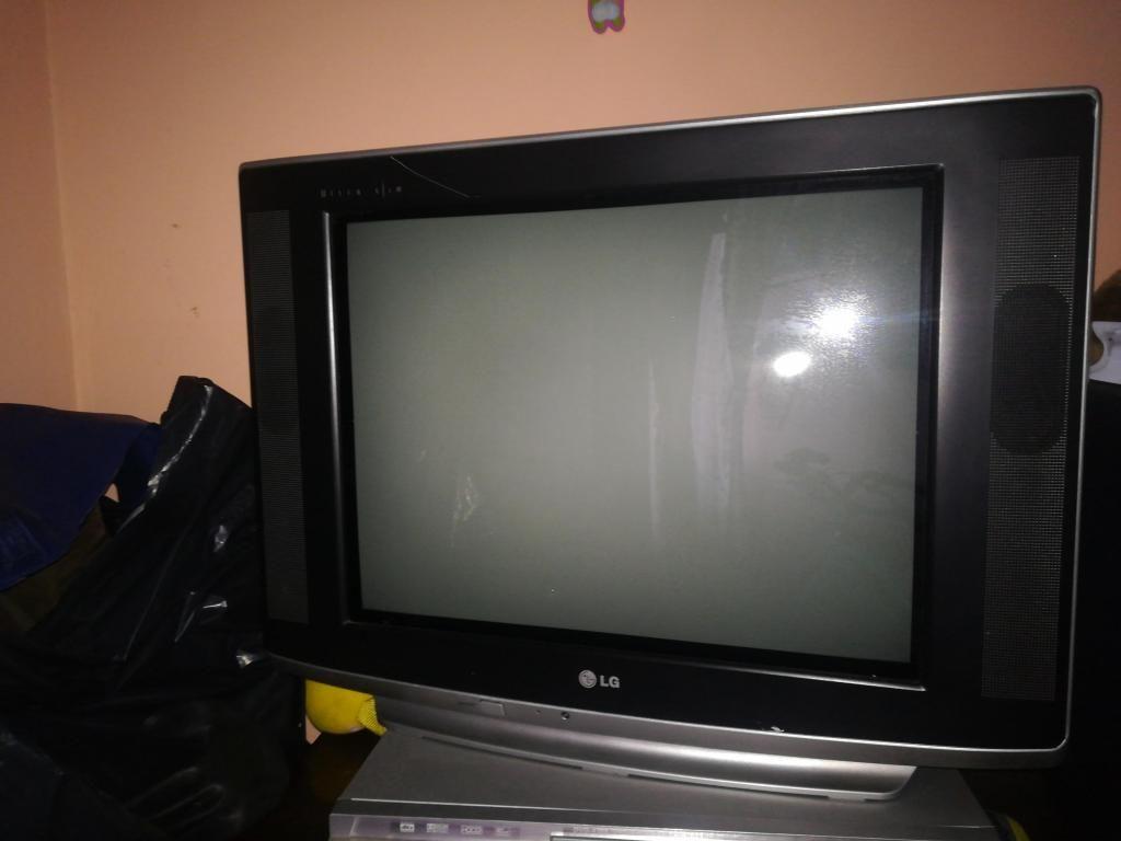 Televisor de 21 pulgadas con control