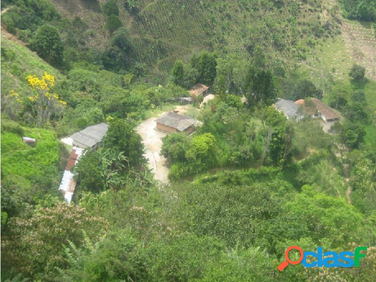 Finca ganadera en venta en Amaga Antioquia