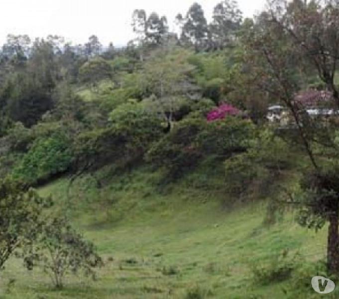 Se vende lote en Rionegro cerca parque para vivienda campest