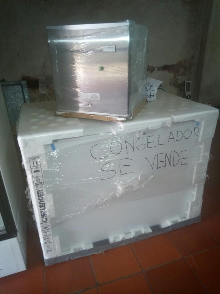 Vendo Congelador Y.mininevera