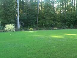 Semillas Grama Jardín O Cancha Clima Cálido