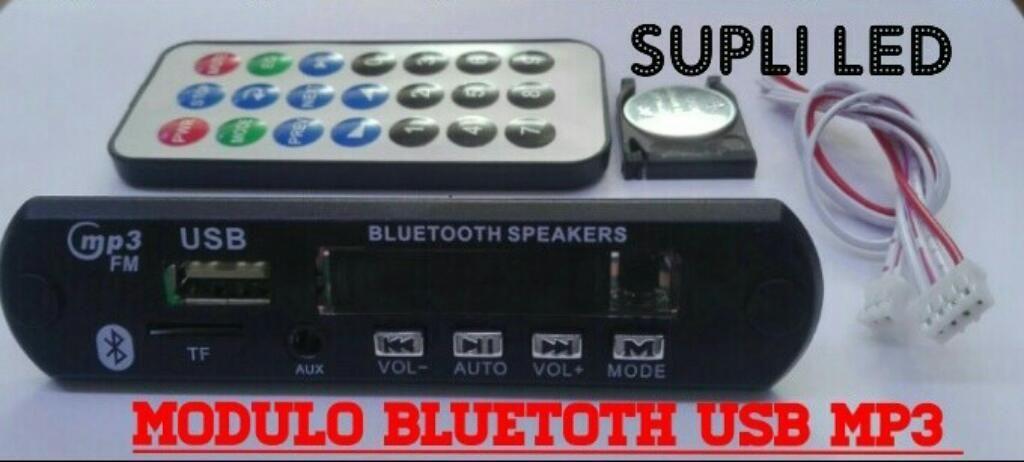 Modulo Usb Bluetooth Mp3 Radio Fm Equipo