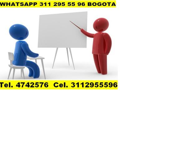 Asesorías, algoritmos, programación, Python, visual basic,