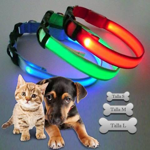 Collares led para mascotas.