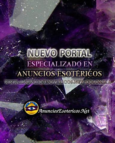 Consigue clientes en nuestro portal