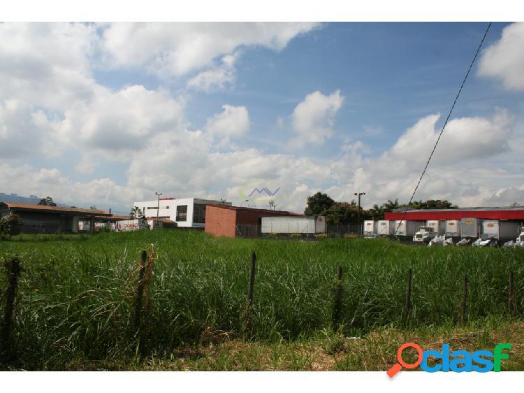 Lote en arrendamiento Dosquebradas - La Macarena