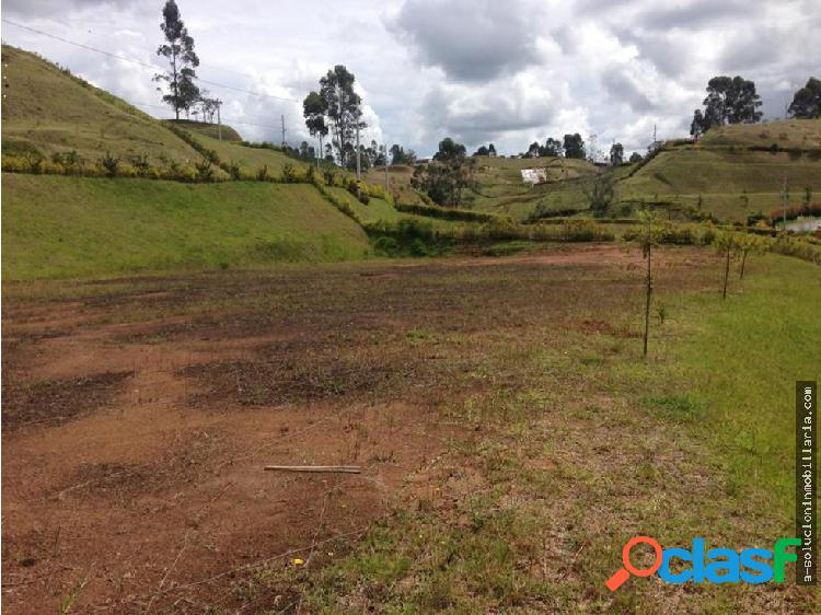 Lote en venta Via Rionegro- La Ceja Antioquia