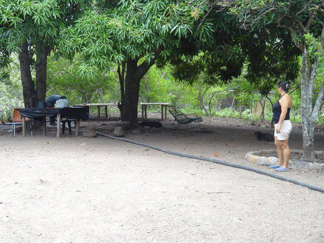 PROYECTO PISCICOLA A ORILLA RIO BACHÉ A 22 KM DE NEIVA