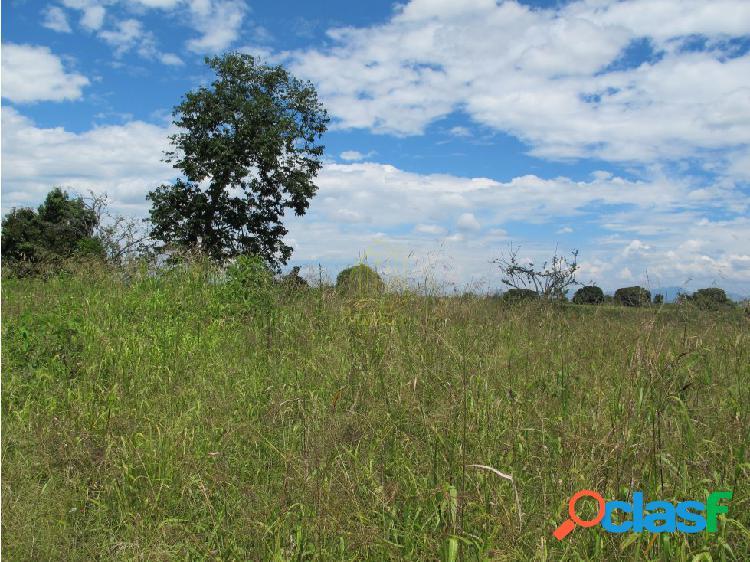 Se Vende Lote Campestre en Quimbaya Quindio