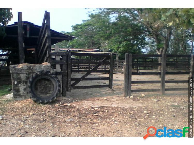 Vendo Finca Agroindustrial Sector Puerto Berrio