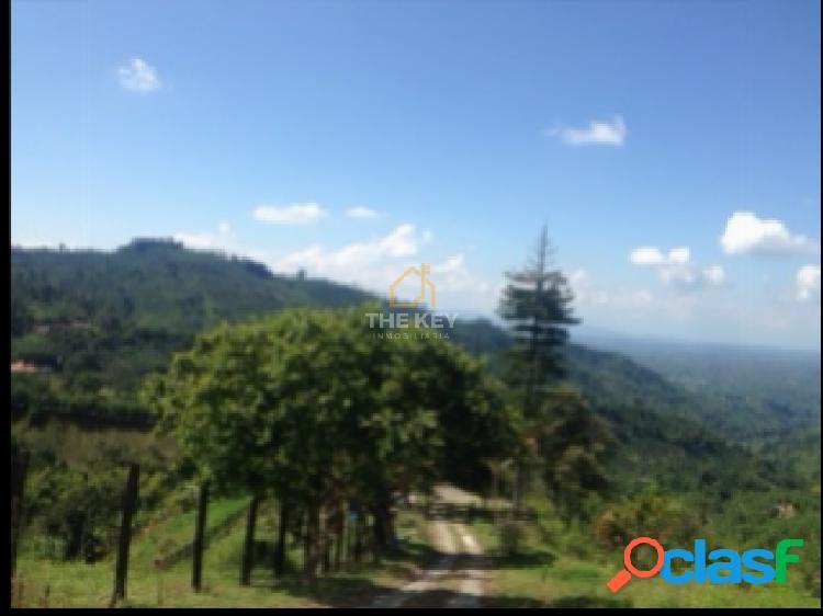Venta de finca en Pijao, Quindío