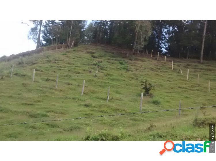 Venta de lote en Rionegro vereda Abreo